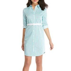 The Limited | Striped Button Front Shirt Dress 4